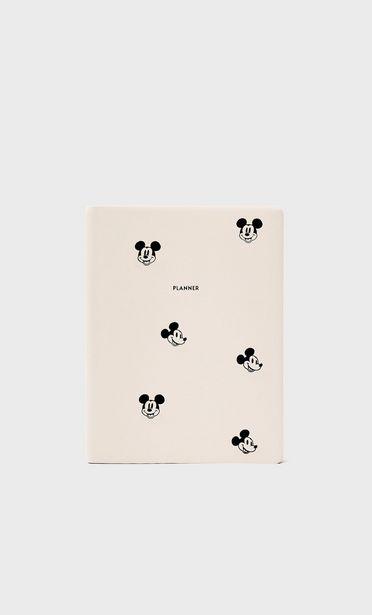 Plánovač svýšivkou Mickey Mouse akce v 399Kč